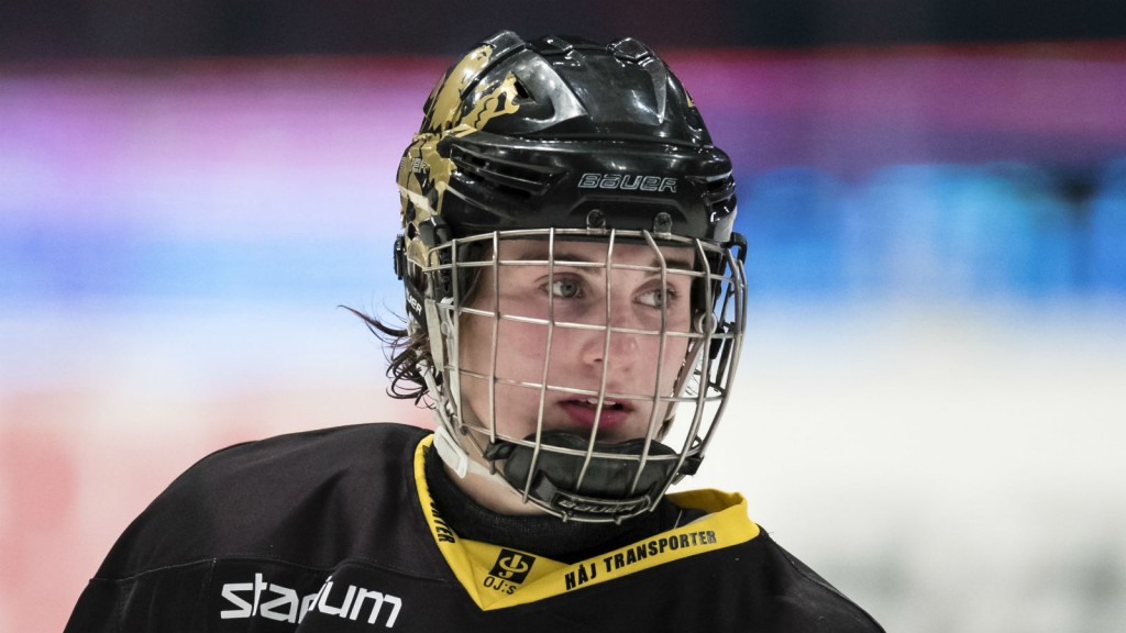 Nils Höglander i AIK.