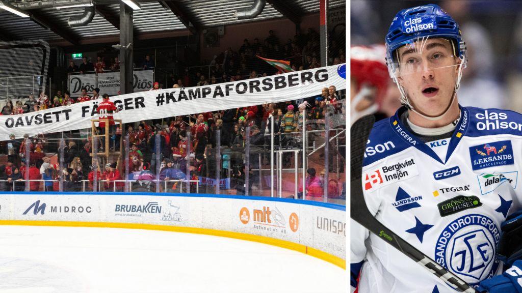 Succéinsamlingen: Över 700 000 kronor till Forsbergs fond
