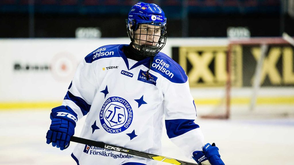 ishockey-sdhl-djurgarden-leksand-1562185065.jpeg